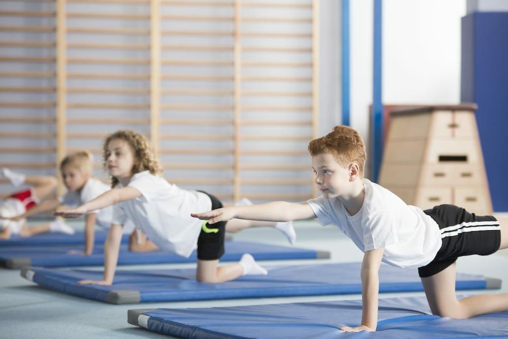 gymnastics at the olympics.